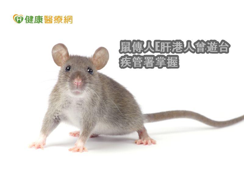 港鼠傳E肝患者曾來台 疾管署:目前無案例