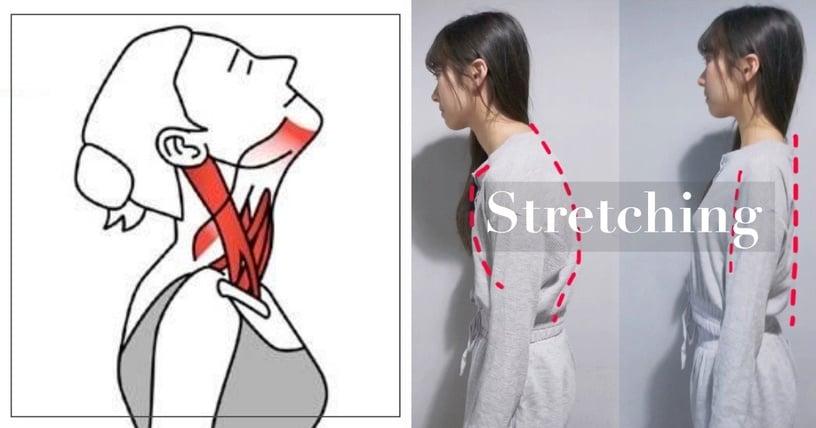 辦公室族肩頸痠痛必備!健身教練5步驟「拉筋運動」解除酸痛,還能矯正駝背、改善體態