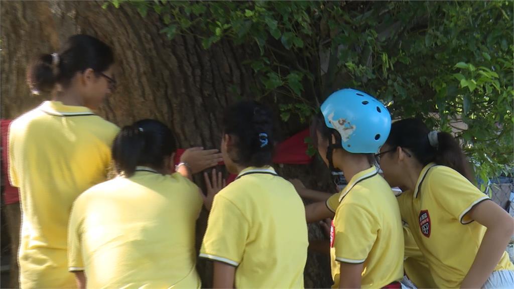 彰化最迷你小學 8名小六生攀樹拚畢業