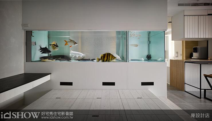 養魚要清楚6種魚缸類型,及保養清潔3方法